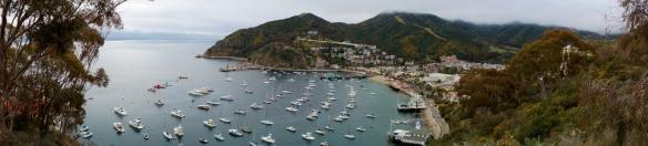 Catalina Island的清晨